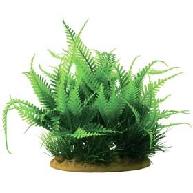 Растение пластиковое PRIME «Папортник», 15 см