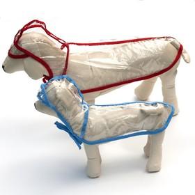 Дождевик с капюшоном для собак OSSO, р. 55 (ДС 55 см), прозрачный, окантовка микс цветов
