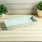 Ящик для рассады, 40 × 17,5 × 5 см, белый