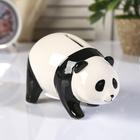 """Piggy Bank ceramic """"the little Panda"""" 8,5х15х7 cm"""