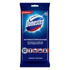 Влажные салфетки для очищения поверхностей Domestos антибактериальные, 30 шт