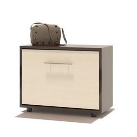 Обувница, 600 × 287 × 482 мм, цвет корпус венге/фасад белёный дуб