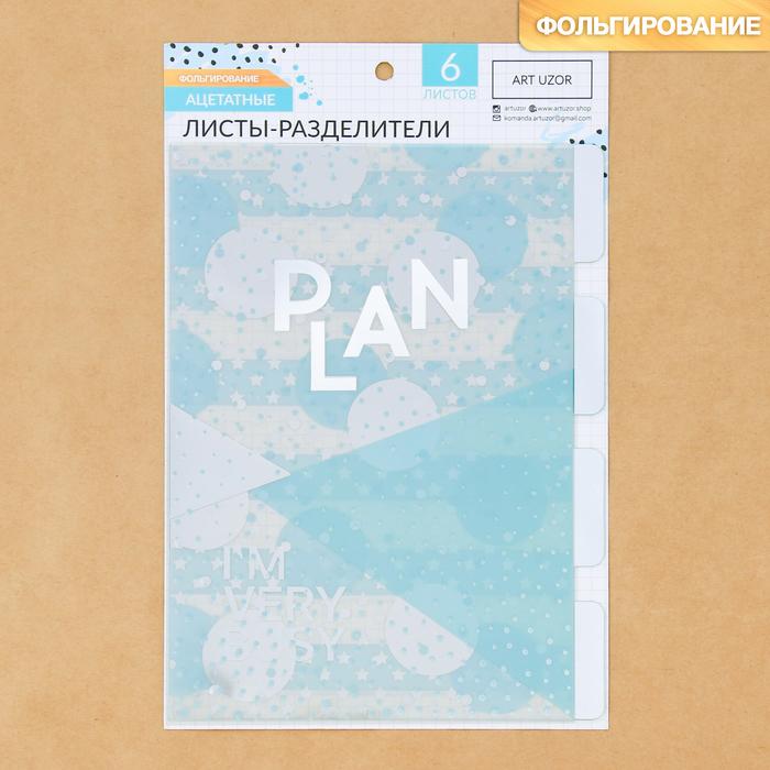 Набор ацетатных разделителей для планера «Мята», 16 × 25 см, 6 листов