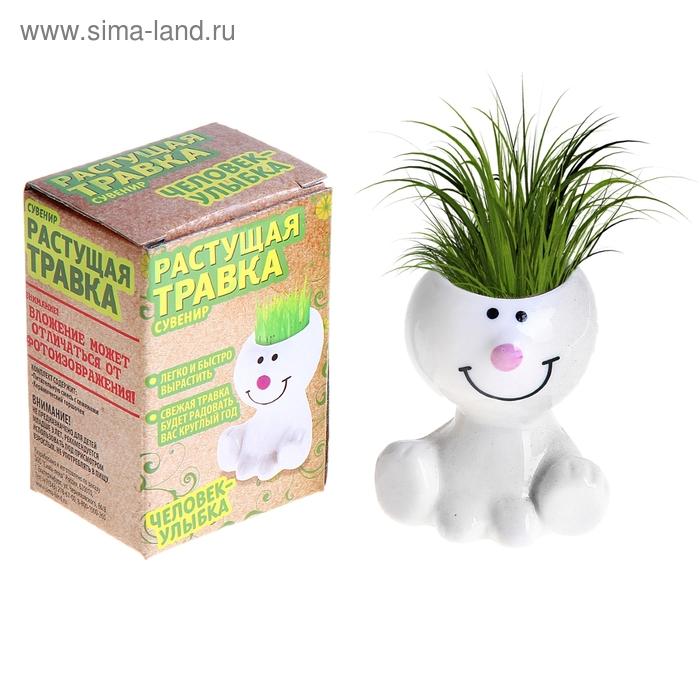 """Растущая трава """"Человечек с улыбкой"""" МИКС"""