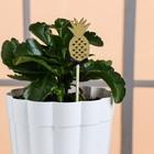 "Decorative plug ""Pineapple"", 7 × 14 cm"