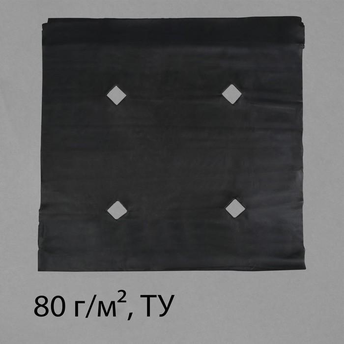 Материал мульчирующий, с перфорацией, 10 × 1,6 м, плотность 60, с УФ-стабилизатором, чёрный, Greengo, Эконом