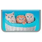 Пенал 1 секция «Котята в корзинке», для девочки,115 х 205, ламинированный картон 3D «Канцбург» 31П26