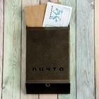 Ящик почтовый «Почта», без замка (с петлёй), цвет бронзовый