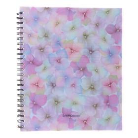 Тетрадь А5+, 60 листов в клетку, на гребне, Erich Krause Phloxes, пластиковая обложка