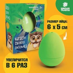 Растущие животные в яйце «Сова»