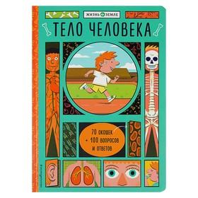 Книжка с окошками «Тело человека»