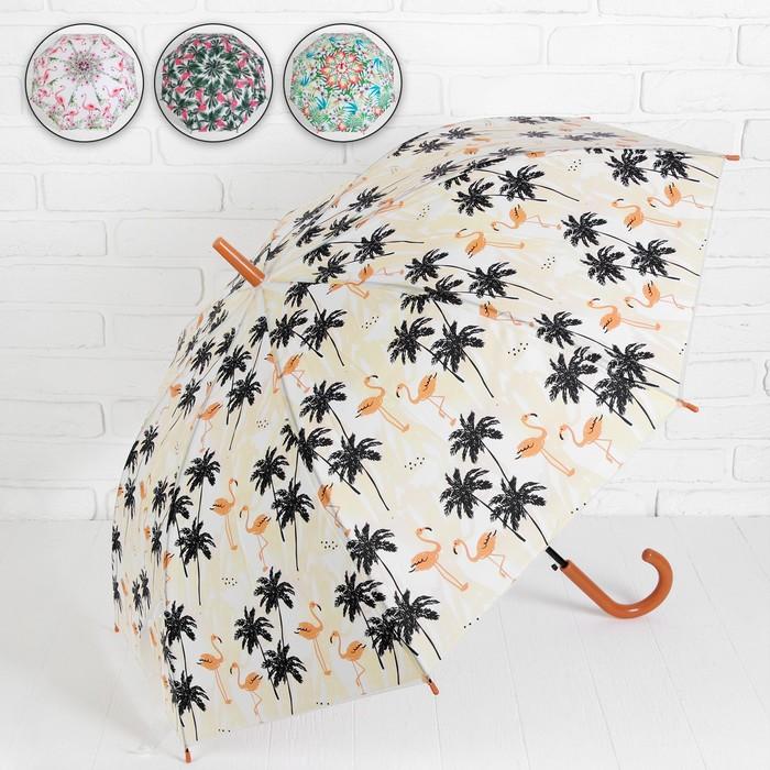 Зонт - трость полуавтоматический «Тропики», 8 спиц, R = 49 см, цвет МИКС