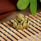 "Netsuke Ltd bronze ""Little frog in the Lotus,"" 2,5x2,5x2,5 cm"