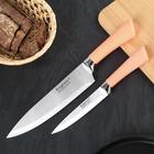 Набор кухонных ножей «Рич», 2 предмета, цвет МИКС