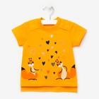 Футболка для девочки, цвет оранжевый, рост 86 см (52)