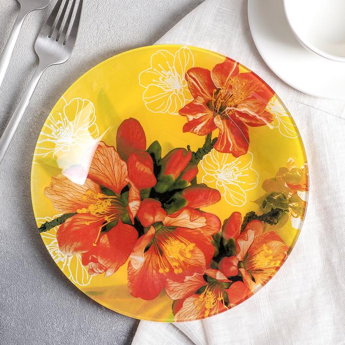 Тарелка десертная Доляна «Солнечный день», d=20 см - фото 798179759