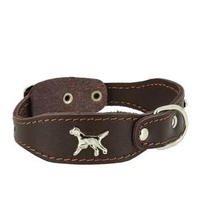 """Ошейник кожаный """"Флер"""" украшенный """"Собака"""", выносное кольцо, ОШ 39-46 х 2,5 см, коричневый"""