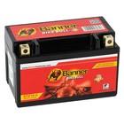 Аккумуляторная батарея Banner Bike Bull 9 Ач 50901 GTZ10-4 GEL