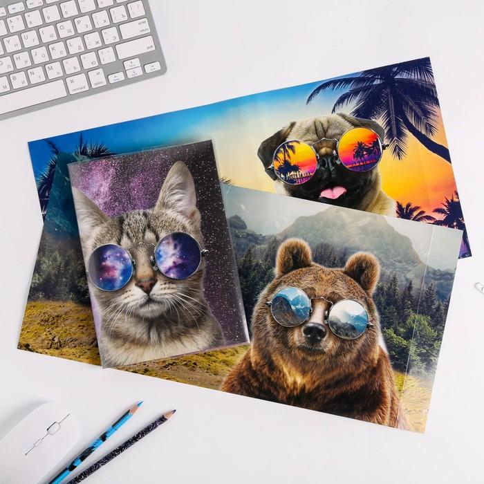 Обложка со вставками «Животные», 21.5×40 см