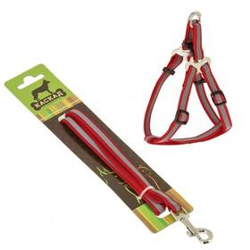 Комплект амуниции светоотражающий, 1 см, шлейка 20-40 см, поводок 120 см, нейлон, красный