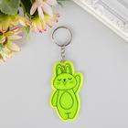 "Key chain plastic reflective ""Bunny - hi!"" MIX 6,7x4,1 cm"