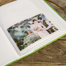 Фотоальбом на 300 фото 10X15см, ПП карм., 2ф на стр, golden bug 2 - фото 7279438