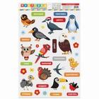 Наклейки для дома «Изучаем птиц», 24 × 37 см