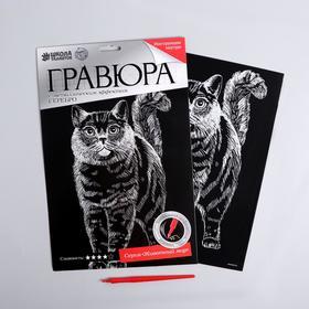 """Гравюра на подложке """"Кот"""" с металлическим эффектом серебра А4"""
