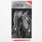 """Гравюра на подложке """"Лошадь"""" с металлическим эффектом серебра А5"""