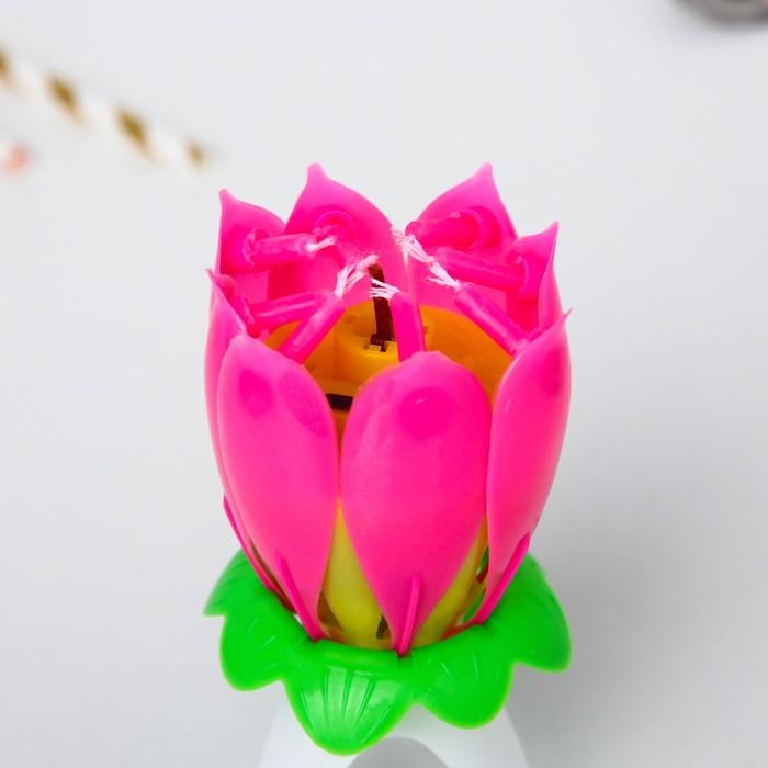 Свеча музыкальный цветок, Феи Винкс, 12.5 х 5.7 см - фото 35609060
