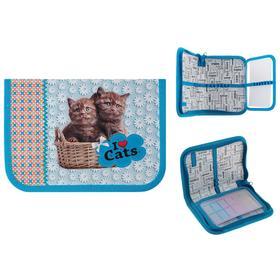 Пенал 1 секция 130х190 мм, откидная планка, ламинированный картон, для девочки, «Шоколадные котята» Ош