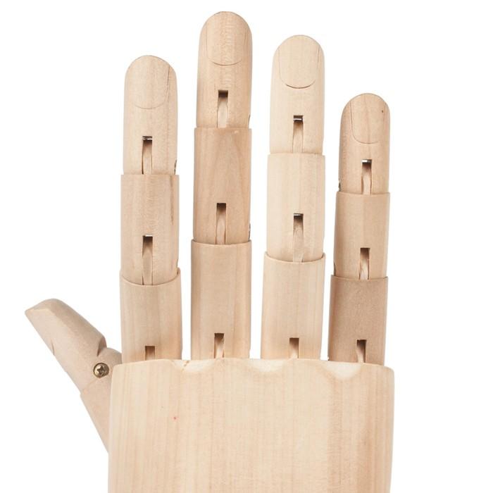 Деревянная фигура Анатомические детали: Рука левая мужская, высота 30 см BRAUBERG