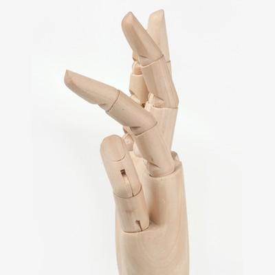 Деревянная фигура «Анатомические детали: Рука левая мужская», высота 30 см, BRAUBERG