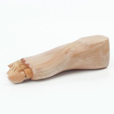 Деревянная фигура «Анатомические детали: Стопа правая мужская», длина 25 см, BRAUBERG