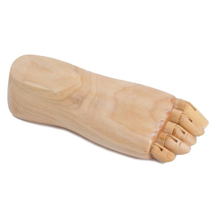 Деревянная фигура «Анатомические детали: Стопа правая женская», длина 22 см, BRAUBERG