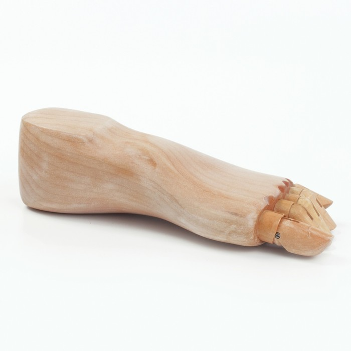 Деревянная фигура Анатомические детали: Стопа левая мужская, длина 25 см BRAUBERG