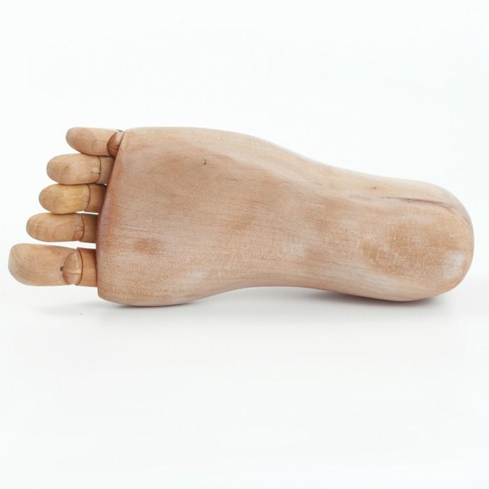 Деревянная фигура «Анатомические детали: Стопа левая мужская», длина 25 см, BRAUBERG