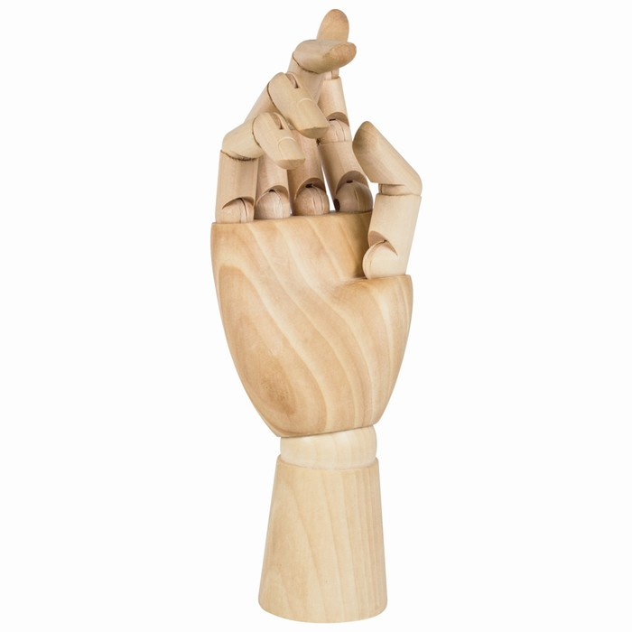 Деревянная фигура «Анатомические детали: Рука правая женская», высота 25 см, BRAUBERG