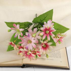 "The bouquet ""Gazania"" 25 cm, mix"