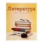 Тетрадь предметная «Предметы», 36 листов в линейку «Литература», со справочным материалом, белизна 75%, картонная обложка