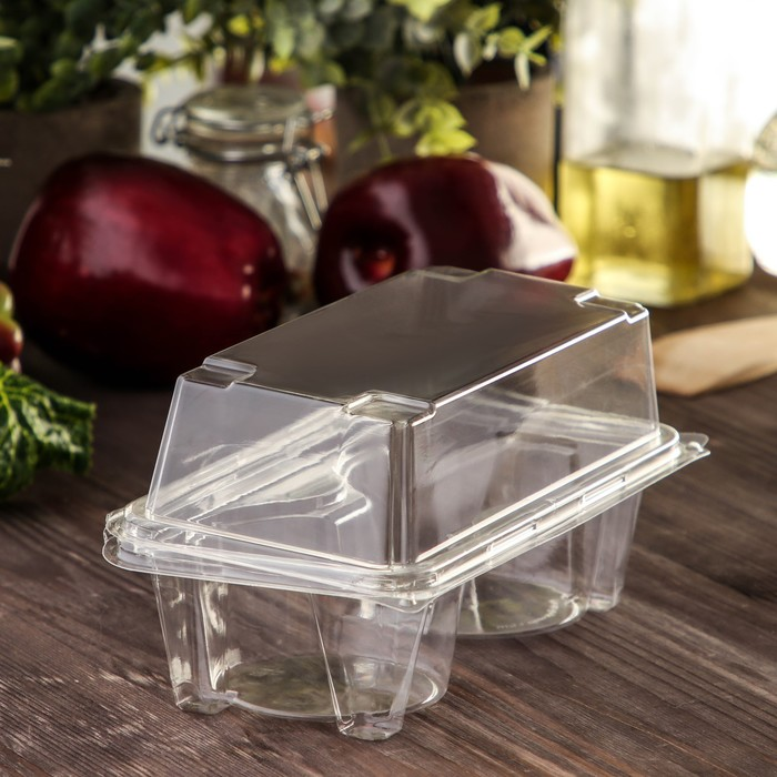 Контейнер с неразъемной крышкой ПР-ПК62С2 на 2 кекса, 18,8х13,8 см