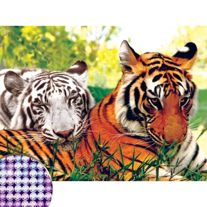 """Алмазная вышивка с частичным заполнением на раме """"Тигры"""" 30*40 см"""