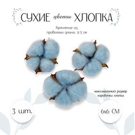 Dried flowers cotton set 3 PCs., 1 PC. size 6 × 6 cm, colour blue