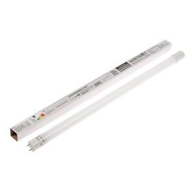 """Лампа светодиодная TDM """"Народная"""", G13, Т8, 10 Вт, 4000 К, 600 мм, матовая"""