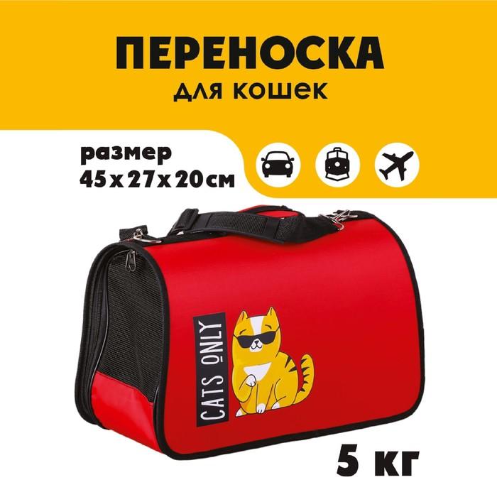 Сумка-переноска раскладная Cats only 45x27x20 см