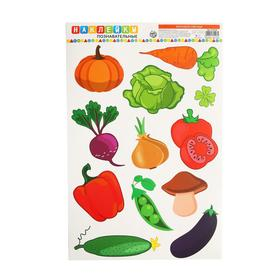 "Stickers for home ""Learn vegetables"", 24 x 37 cm"