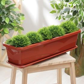 Ящик балконный 60 см, цвет терракот