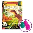Активити книга с наклейками и растущими игрушками «Динозавры», 12 стр. - фото 974862