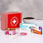 Подарочный набор «Сладкая скорая помощь»: леденец 15 г, конфеты 65 г, чай 20 г, шоколад 27 г