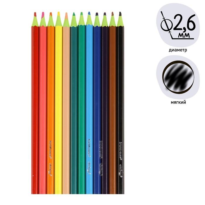 Карандаши 12 цветов, ArtBerry Wood Free, шестигранные, пластиковые, грифель диаметром 2.6 мм - фото 404519242